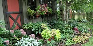 Tropical Backyard Ideas Backyard Tropical Backyard Landscaping Amazing Florida