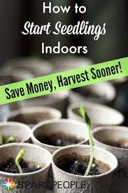 get a jump on your vegetable garden and save money by starting
