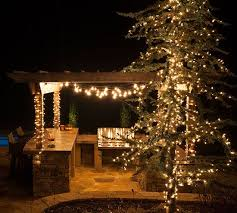 194 best love these lights images on pinterest christmas lights