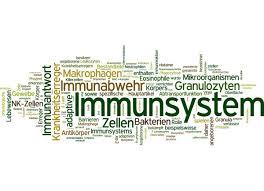 immunschwäche abwehrschwäche mit globuli homöopathisch behandeln agoro de