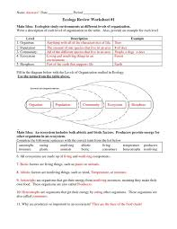 primary succession worksheet calleveryonedaveday