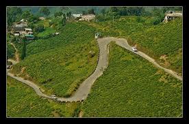 Rock Garden Darjeeling The Road To Rock Garden Darjeeling India Travel Forum