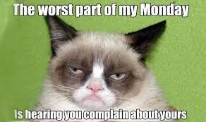 Tard The Cat Meme - 21 grumpy cat memes you can relate to every monday of your life