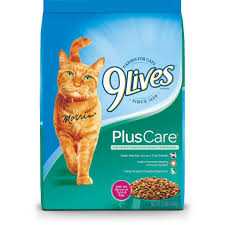a complete guide to the best cheap cat food wet and dry