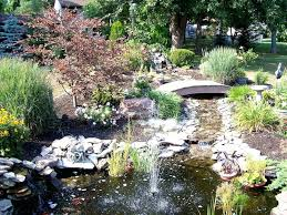 small garden pond ideas home design ideas and pictures