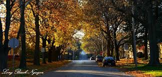 fall foliage iowa iowa photo long bach nguyen photos