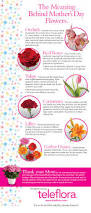 infographic the meaning of mother u0027s day flowers teleflora blog
