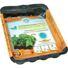 organic heirloom vegetable gardening seeds organic non gmo seeds