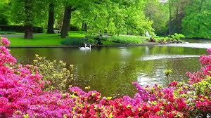 amazing beautiful photos home