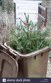 decoration tree bin awesome part 6 in a