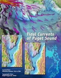 Puget Sound Tide Table Vector Tidal Jpg
