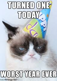 Cat Birthday Memes - grumpy cat birthday memes yes memes