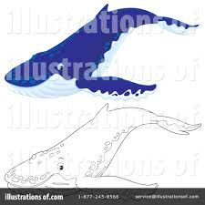 humpback whale clipart 1125447 illustration by alex bannykh