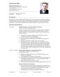 Resume Sample Format Doc by Curriculum Sample Vitae Cv Resume Template Format Example In Us