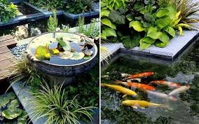 fish pond design ideas small back yard fish ponds small garden
