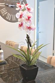 silk orchids trick re potting silk orchids to look real
