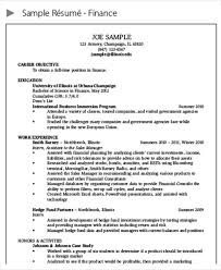 Sample Resume Finance Manager by 25 Finance Resumes In Pdf Free U0026 Premium Templates