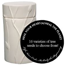 cremation tree grow a tree cremation urn living memorial memorial gallery