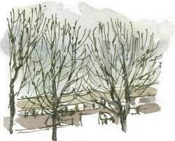 corel painter sketch pad u2013 wild yorkshire