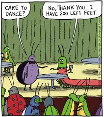 the argyle sweater july 17 2015 dogs u0026 humour pinterest