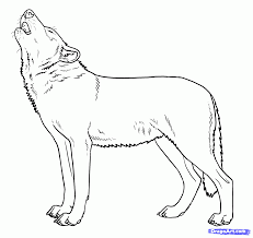 easy sketches of wolves best photos step how to draw howling