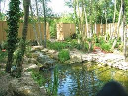 Natural Backyard Pools by Natural Pools Can Prove To Be An Excellent Home Update Idea