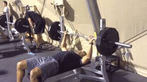 Flat Bench Barbell Press Exercise Database U2014 Tee Major The Official Website For Tee Major