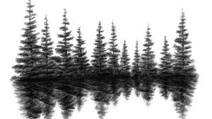 pine tree line drawing pine tree line silhouette search