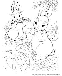 farm animal coloring pages wild bunny rabbit coloring