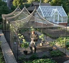Fruit Garden Ideas Fruit Cage Protects Against Some Kinds Of Pests That Might