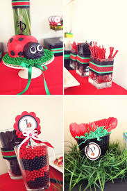 134 best lady bug party images on pinterest ladybug party