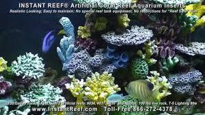 saltwater fish tank decorations in 120 gallon marine fish aquarium