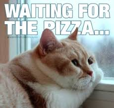 Meme Pizza - the best pizza memes hungry howies
