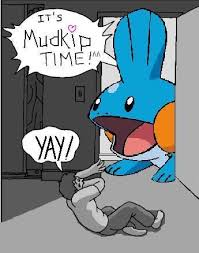 image 90 i herd u liek mudkips know your meme