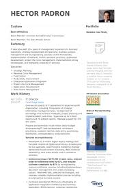 Sample Resume Business by It Director Resume Samples Visualcv Resume Samples Database