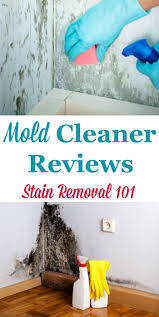 Best Stain Remover Clothes 66 Best Stain Removers Images On Pinterest Stain Removers