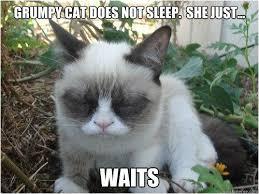 Grump Cat Meme Generator - can i has cheezburger meme generator great images create a grumpy