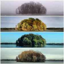 capturing the four seasons in a single image twistedsifter