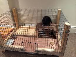 Make A Rabbit Hutch How To Set Up A Playful Environment In A Rabbit U0027s Cage 10 Steps