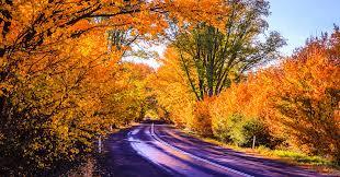 rural autumn color australia james lee flickr