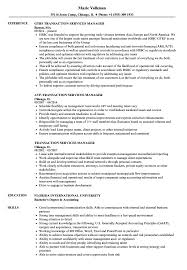 resume template financial accountants definition of terrorism transaction services manager resume sles velvet jobs