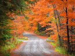 8 beautiful places england fall foliage