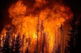 Western Us Wildfires 2015 by Wildfires Inhabitat Green Design Innovation Architecture
