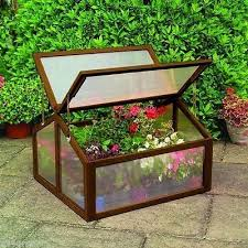 Fall Vegetable Garden Plants by Best 25 Fall Vegetable Gardening Ideas On Pinterest Winter