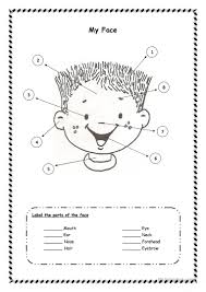 14 free esl parts of the face worksheets