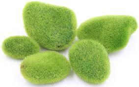 Moss Vase Filler Amazon Com Moss Balls Vase Filler Lebeila Moss Balls Decorative