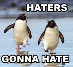 Cute Penguin Meme - haters gonna hate funny penguin memes pics bajiroo com
