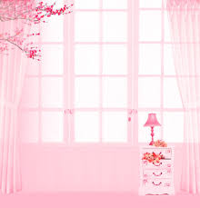 custom backdrops pink style wedding indoor scenic photography background 200x300cm