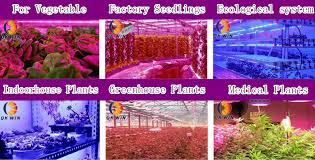 most efficient grow light high power 300w led grow light for plants flowering stage with big