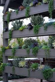 indoor wall garden plants holman wall garden bunnings wall garden